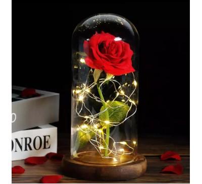 Zijde roos in stolp