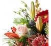 Veelzijdige Bloemen + Vaas